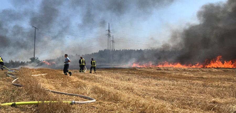F1 – Flächenbrand, Aufenau